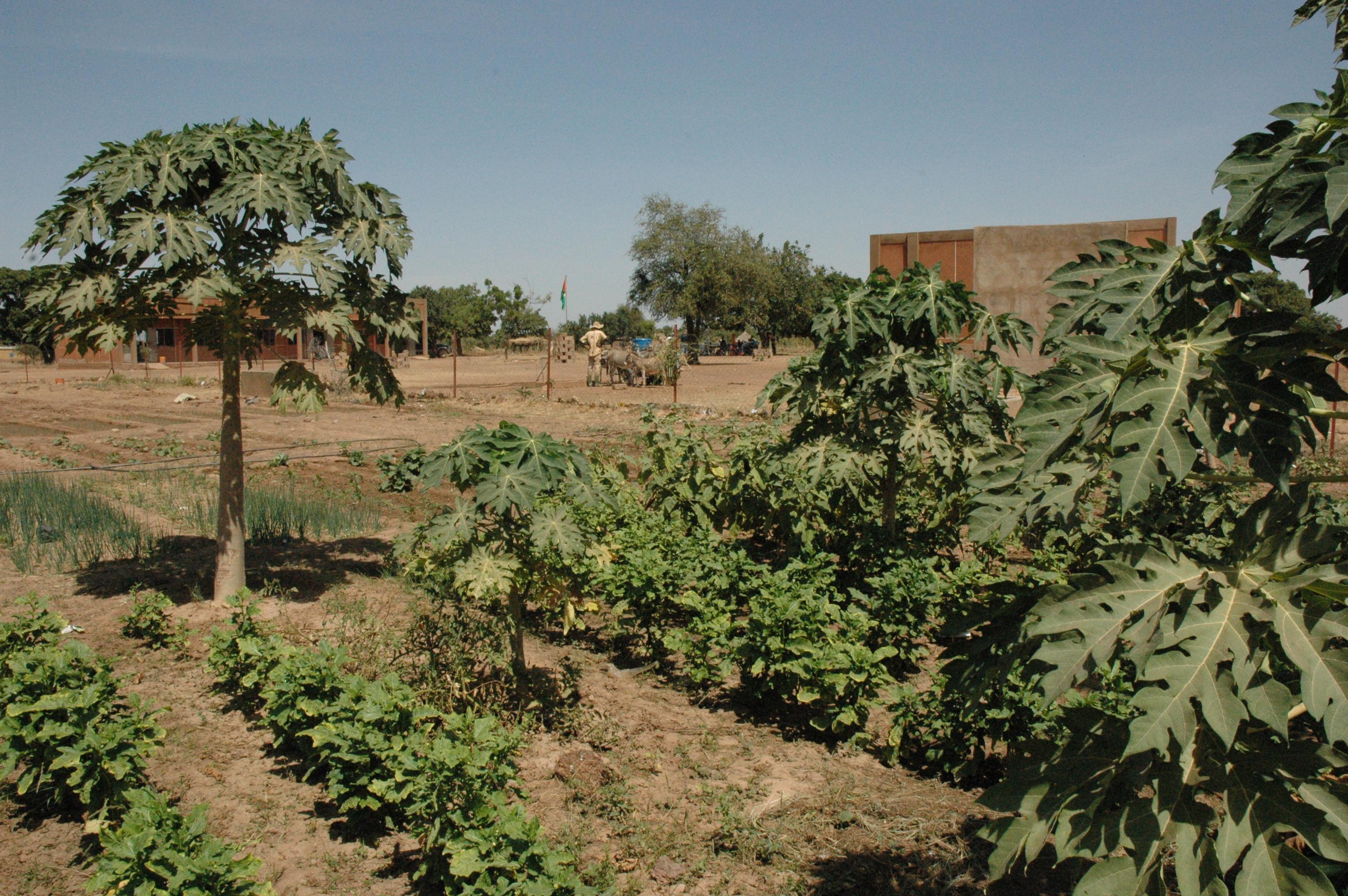 Jardin de l'école de Kiendsom